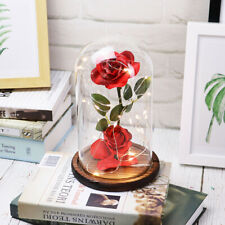 Beauty and The Beast Enchanted Rose Lamp Silk Artificial Flower Fake Plant Glass