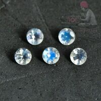 Details about  /AAA Quality Blue Fire Faceted Cut Rainbow Moonstone 10MM Round Shape Gemstone