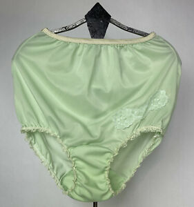 Haynes Classic Panties Pic