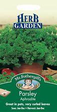 Mr Fothergills - Pictorial Packet - Herb - Parsley Aphrodite - 500 Seeds