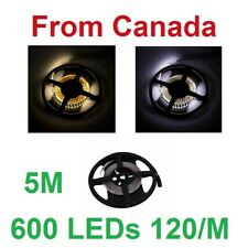 5M 600LEDs Cool, Warm, Neutral White 120L/M SMD 2835 3528 Strip DC12V led strip