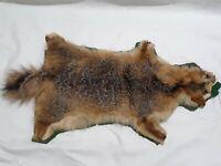 """Vintage 28"""" Large Raccoon Hide, Fur, Pelt"""