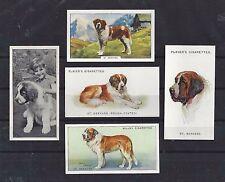 Vintage 1929 - 1938 UK Dog Art Cigarette Card Collection x 5 ST. SAINT BERNARD