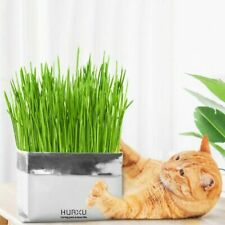 Pet Cat Grass Soilless Culture Growing Kit Cats Stomach Hairball Planter Co L7V2