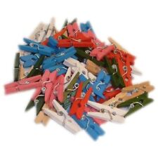 100 Mini Wooden Pegs Crafting Craft Pegs Assorted Colours