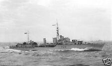 ROYAL NAVY TRIBAL CLASS DESTROYER HMS MAORI - LOST AT MALTA IN 1942 - BISMARCK