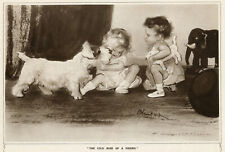 SEALYHAM TERRIER DOG ANTIQUE ART PRINT - Cold Nose of a Friend - Edward Blampaid