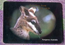 Rare Vintage Post Card ...GREETINGS FROM GIN GIN, Qld ..KANGAROO, AUSTRALIA
