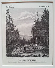 ADIRONDACKS- On Blue Mountain, Timber cutting Original Print 1874 New York State