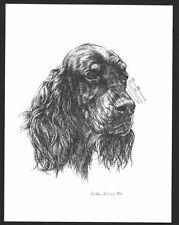 #344 Gordon Setter portrait dog art print * Pen & ink drawing by Jan Jellins