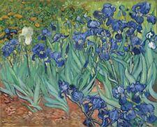Vincent Van Gogh Irises Art Print Poster 30x24 inch