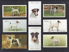 1902 - 1961 UK Dog Art Cigarette Card Collection x 9 SMOOTH HAIRED FOX TERRIER