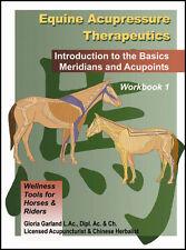 Equine Acupressure Workbook- Acupressure for Horses