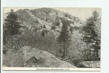 Above the Spring Monadnock Mountain NH Postcard New Hampshire Antique Unposted