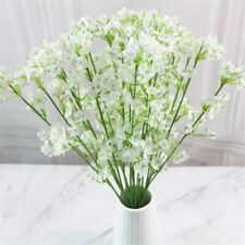 60Pcs Rare White Babysbreath Fresh Seeds Fragrant Grass Perennials Home Garden