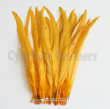"25 pcs 14-16"" long Gold Yellow Dyed Rooster COQUE tail Feathers for crafting NEW"