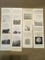 Lot of 1918-19 Cornell Reading Courses AGRICULTURE Lot 5 of 6