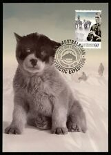AAT ANTARCTIC MK SCHLITTENHUNDE HUNDE HUND DOG CARTE MAXIMUM CARD MC CM bq09