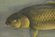 Hanging Scroll Japanese Painting carp ink Japan Asian Art Antique Picture a538