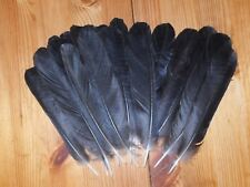 20 Crow plumes de la queue, fly tying, Art & Craft, Tribal arts, bijoux. dreamcatcher