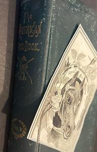 TOUGH 1882-1889 HORSE RACING W/'89 AM. STUD BOOK~11/25/82 RACE PROGRAM CUT RARE