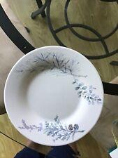 Pfalzgraff Winter Frost Dinner Plates