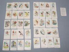 Kartenspiele August der Starke Französische Spielkarte Aus Dresden 32 Blatt Kartenspiel Sonstige