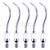 5Pcs Dental Ultrasonic Scaler Tips GK1 for Kavo Air Scaler Scaling Handpiece