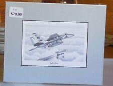 "F-15C Eagle ""Eagle's Prey"" 8X10 Matted Art Prints by artist Willie Jones Jr."
