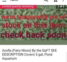 Azolla (Fairy Moss) By the SqFT SEE DESCRIPTION Covers 10 gal, Pond Aquarium