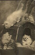 Cute Kittens Playing on Cat House c1910 Postcard