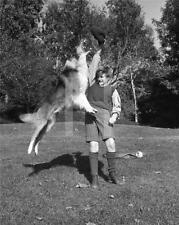 RODDY MCDOWALL LASSIE 1943 CANDID 11X14 DBW by JOHN FLOREA Photo  IM550