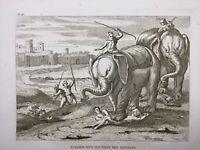 Éléphant Rare Gravure 1844 Supplice des Martyres Chrétiens Atlas Écriture Sainte