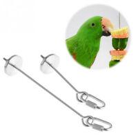 12cm Stainless Steel Skewer Toy Treat Bird Parrot Food Fruit Holder Stick