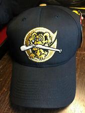 Charleston Riverdogs MiLB Team Replica Baseball Hat Cap New York Yankees SingleA