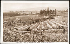 From the Pines to the Orchard, Hood River Vallery, Oregon, printed postcard