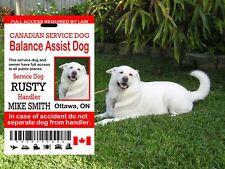 Canadian Service Dog Card, Balance Assistance Dog ID Card,  Service Dog ID Tag