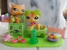 💚HTF Littlest Pet Shop Lps Rare Orange Shorthair Cat Lot #790/525 & 1904/1764💕