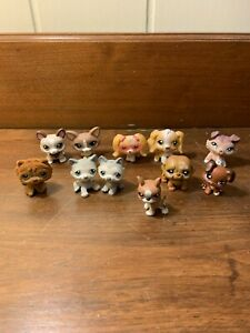 Littlest Pet Shop LPS Lot 11 Dogs 657 415 1864 79 2311 Corgi Cocker 69 1330 70