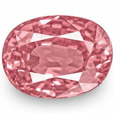 Pink Oval Transparent Loose Sapphires