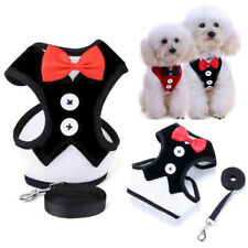 Small Dog Harness and Leash Set For Pet Walking Harness Vest For Puppy Chihuahua