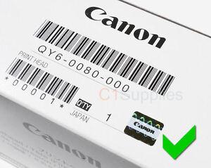 Canon Druckkopf QY6-0080-000 ✔OEM Printhead ip4850 MG5250 MG5350 MX895 ix6520