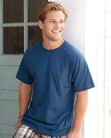 100 Blank Hanes Tagless 5250 T-Shirt Wholesale Bulk Lot ok to mix S-XL & Colors