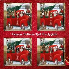 Christmas Santa Express Delivery Red Truck Dog Cat Pet Photo Bedding Quilts