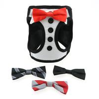 American River Ultra Choke Free Tuxedo Dog Harness - 4 Interchangeable Bows