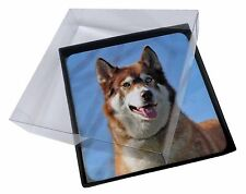 4x Red Husky Dog Picture Table Coasters Set in Gift Box, AD-H68C