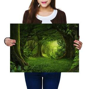 A2 | Magical Green Forest Ancient Tree Size A2 Poster Print Photo Art Gift #8294