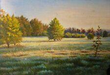 WONDERFUL meadow - ORIGINAL OIL Painting from Ukraine! LANDSCAPE WALL decor ART