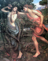 Nice Oil painting Waterhouse - Apollo and Daphne in forest landscape canvas 36""
