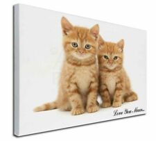 More details for ginger kittens 'love you mum' x-large 30